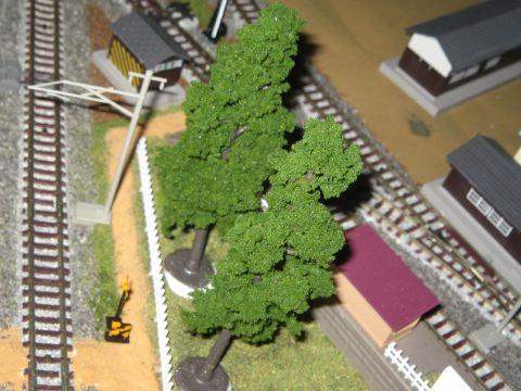 針葉樹・小サイズ